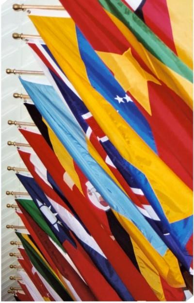 Ad Bld Flags